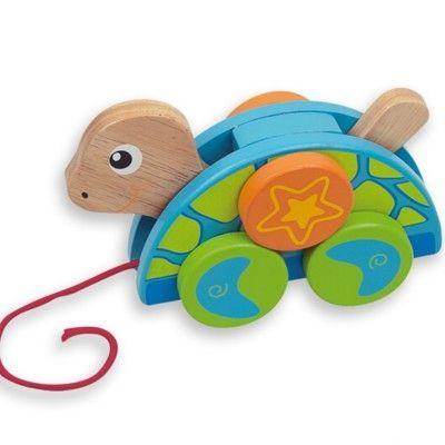 Dragdjur - sköldpadda