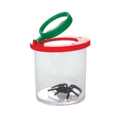 Insektsglas