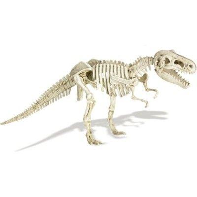 Utgrävningskit - Tyrannosaurus Rex
